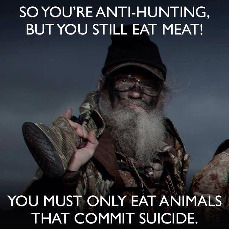 Animals Suicide