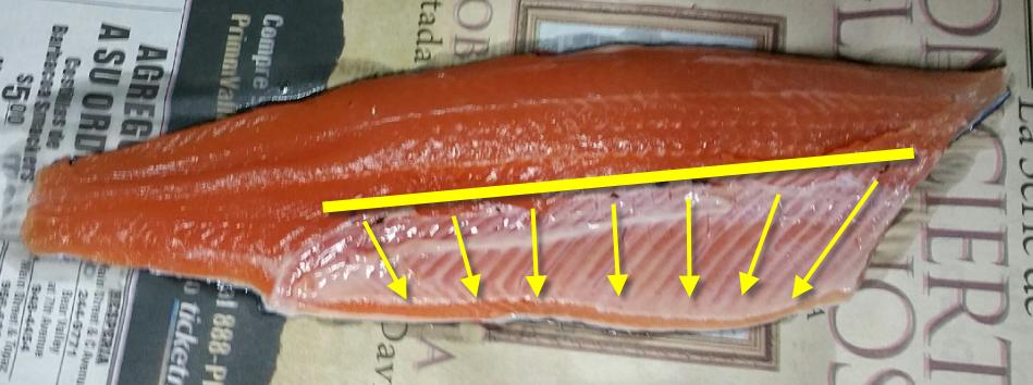 12vonfleck-fish-rib-bones.png