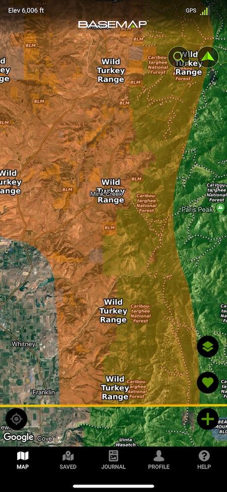 wild-turkey-range.jpg