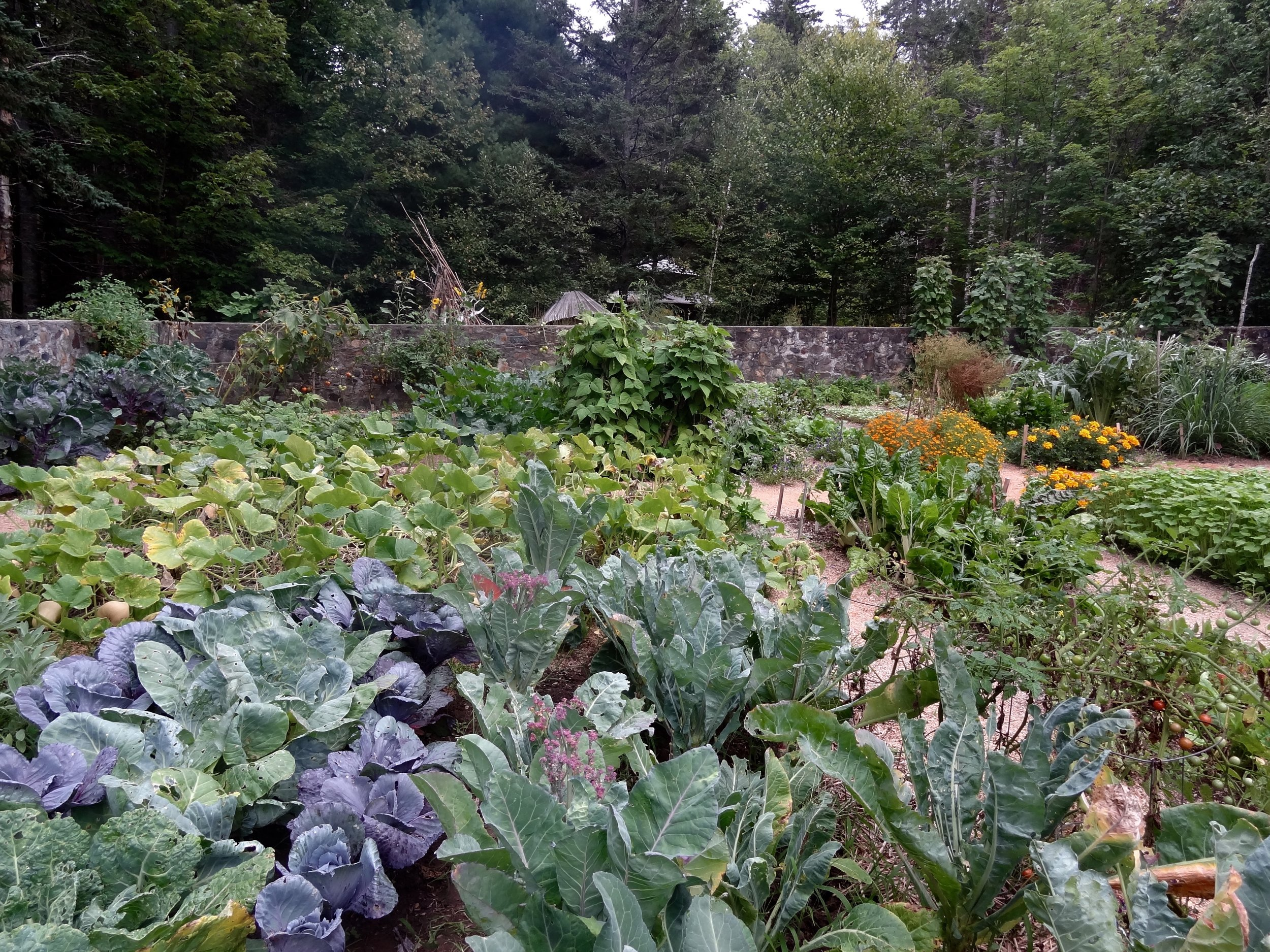 """The Good Life Center is surrounded by beautiful gardens, some amazing hand-built yurts, a greenhouse and toolshed. At the time of my visit, it was being tended to by caretakers (known as """"residents"""")Claire Briguglio and Sam Adels."""