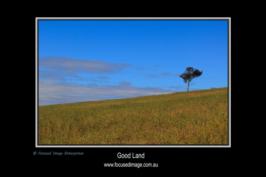 Good Land.jpg