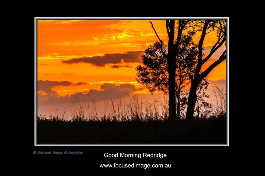 Good Morning Redridge.jpg