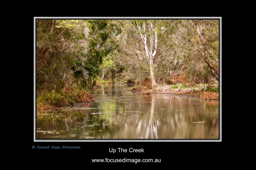Up The Creek.jpg