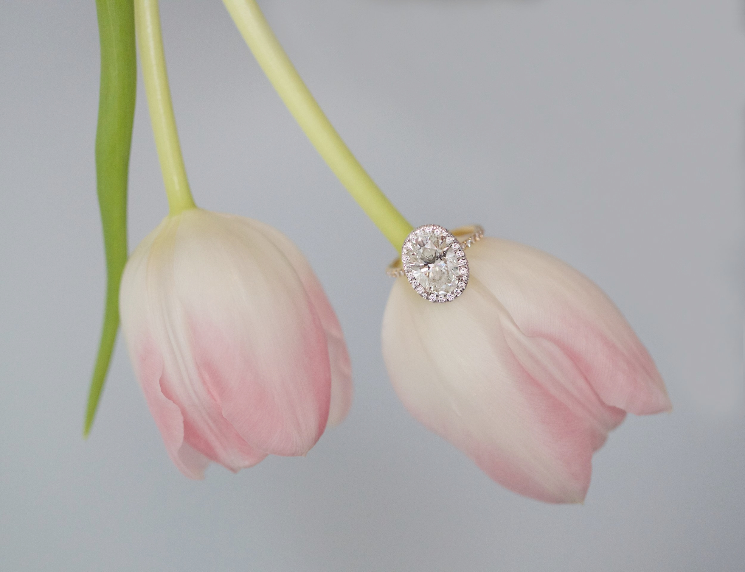 tulip ring 2 - Version 2.jpg