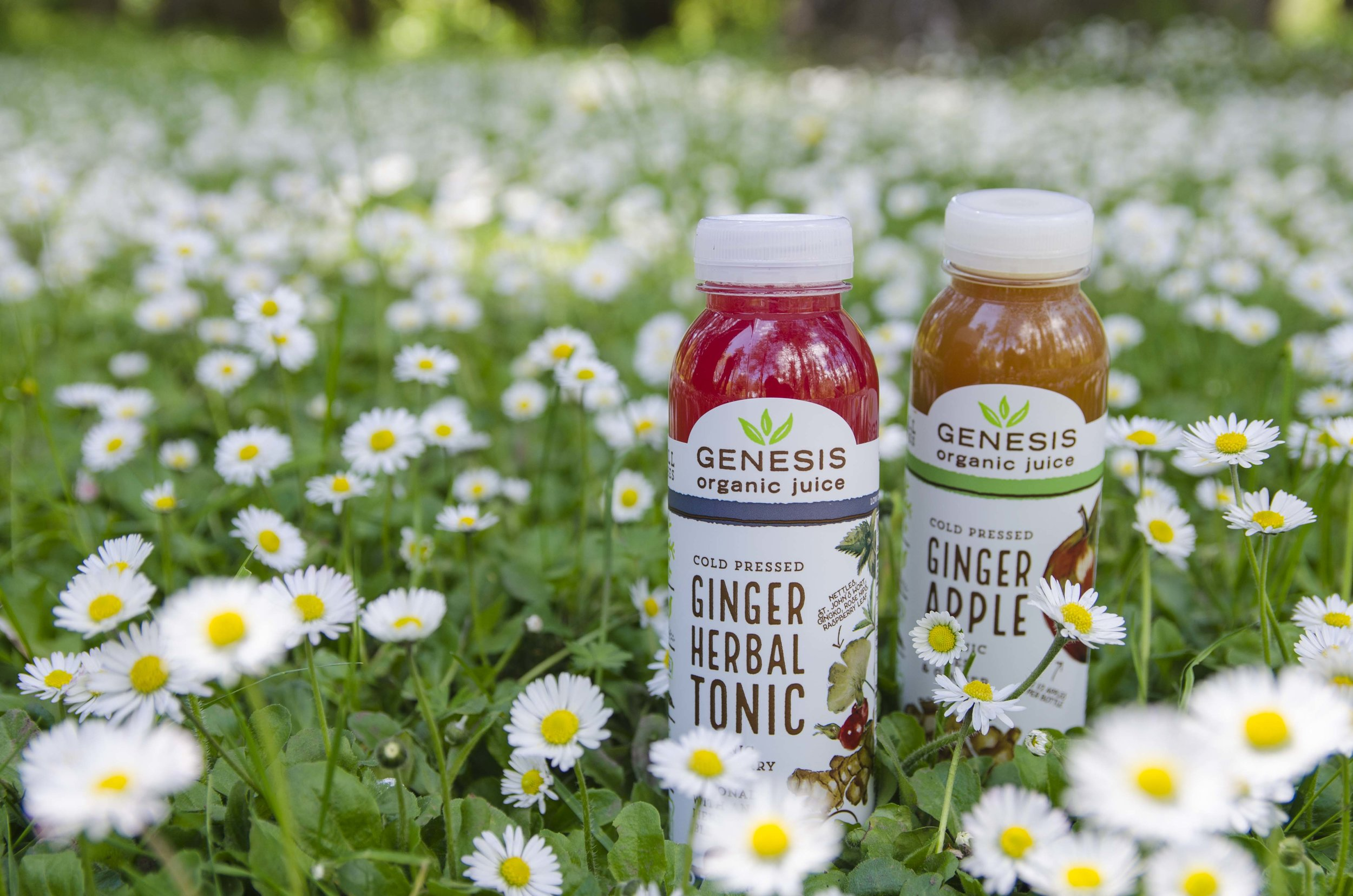 Genesis Juice - In 2017, Genesis Juice rebranded all of its cold pressed juices. I captured product photography of the entire line.