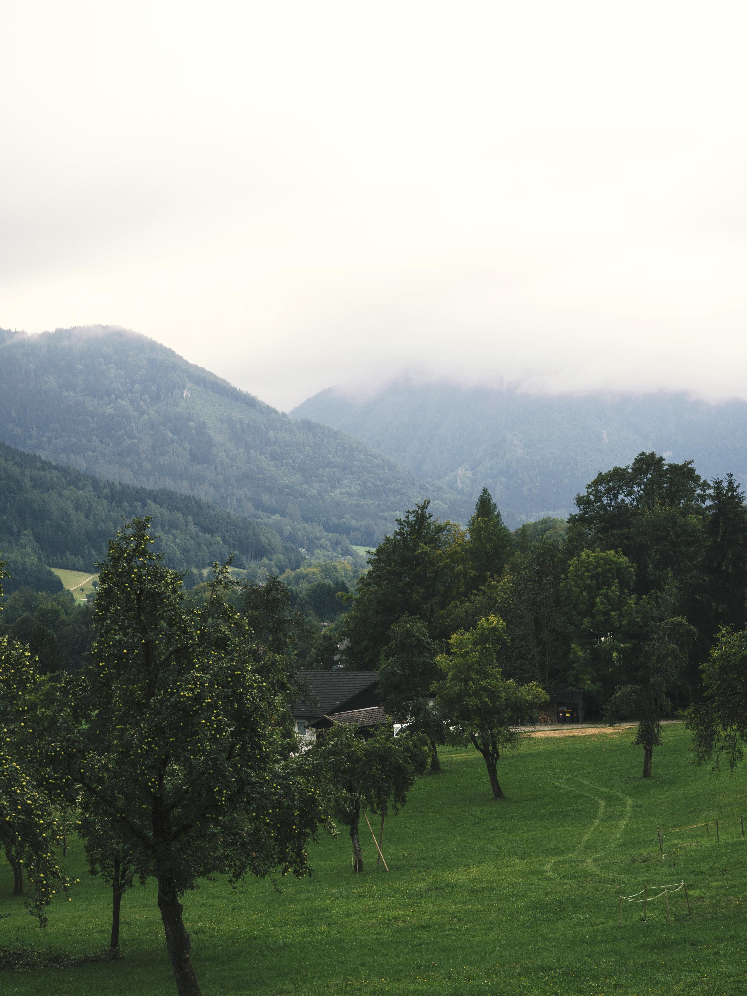 austria1.jpg