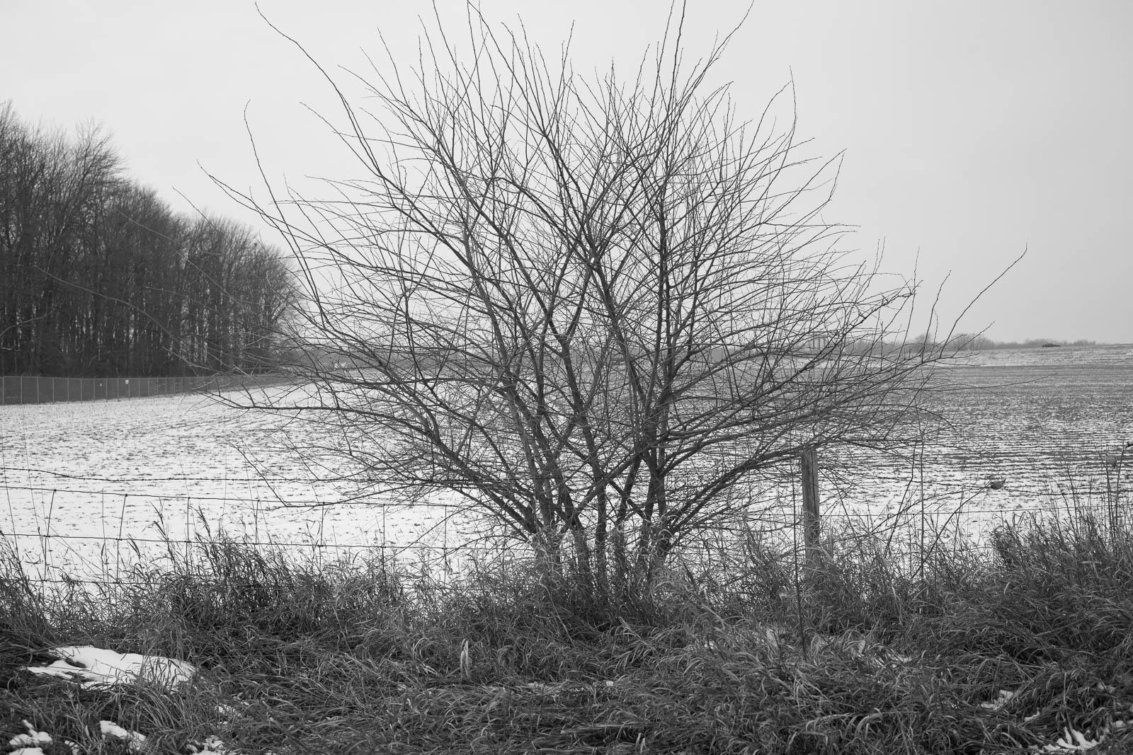 matthew-carroll-248.jpg
