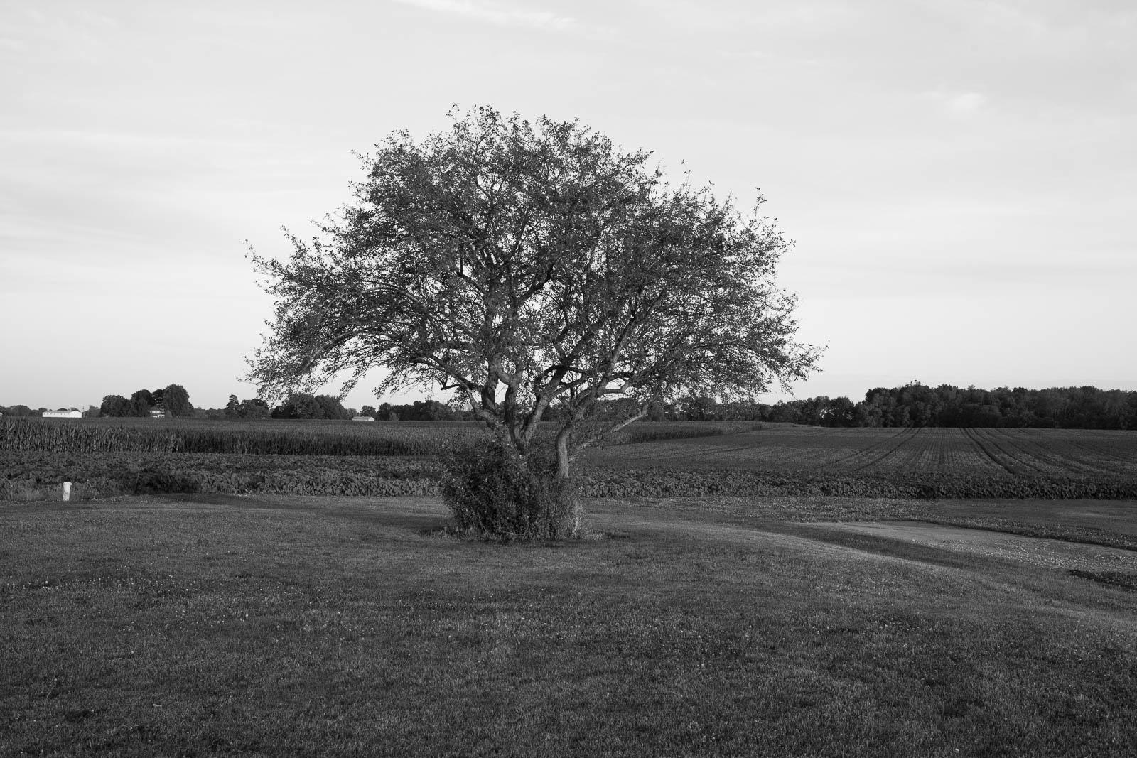 matthew-carroll-324.jpg
