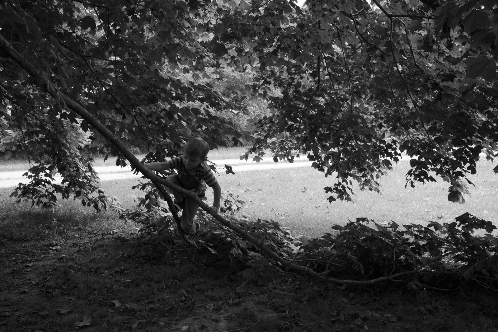 Matthew-Carroll-68.jpg