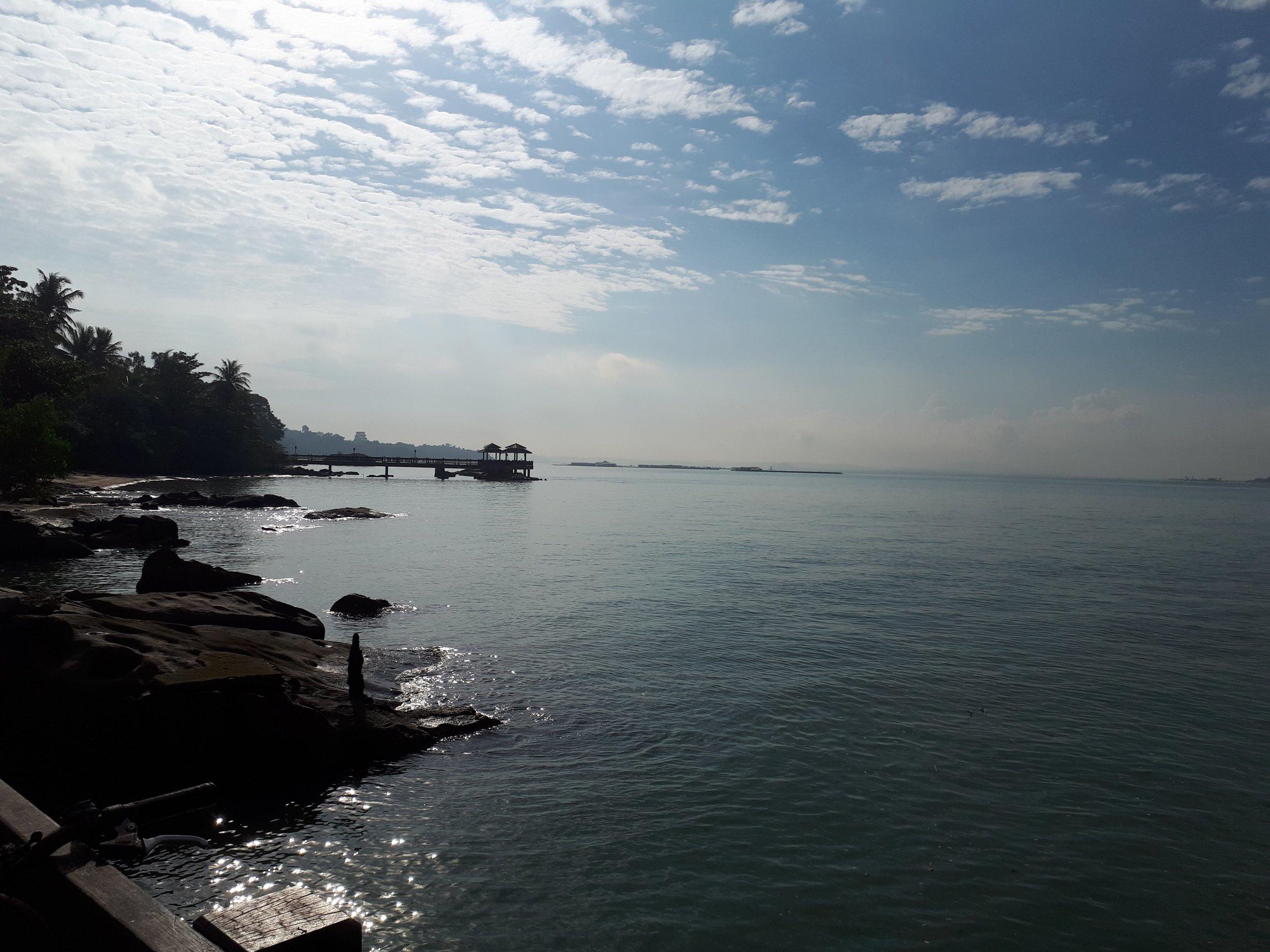 Beautiful Chek Jawa