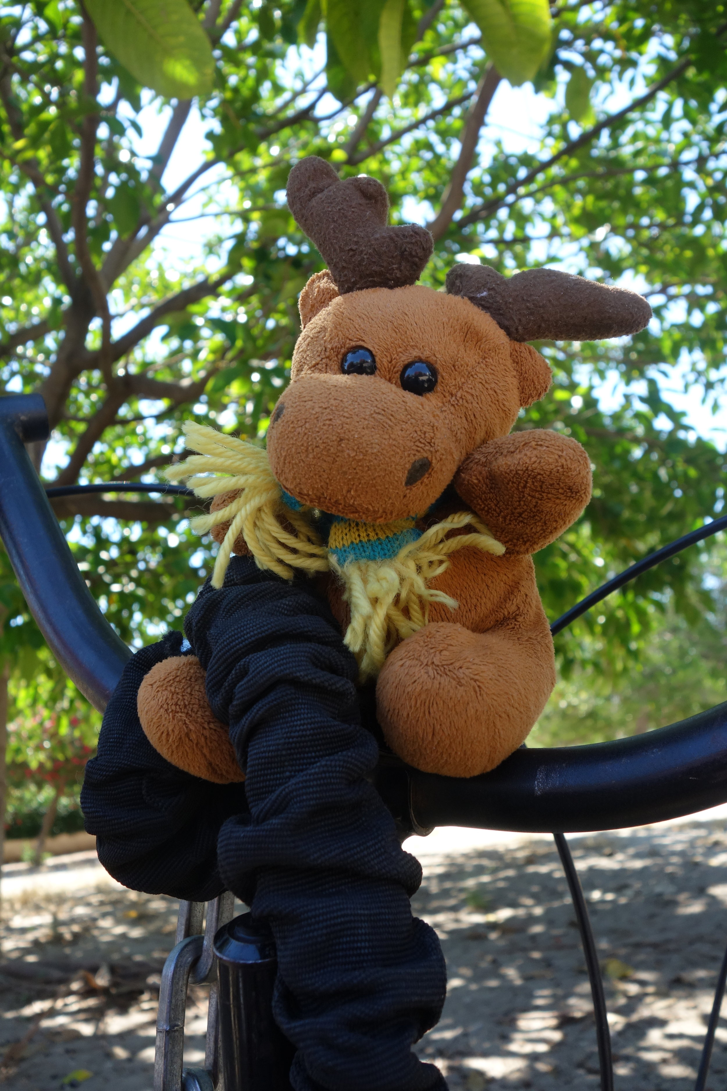 Our Swedish Kids Moose 'Sven' brings luck.