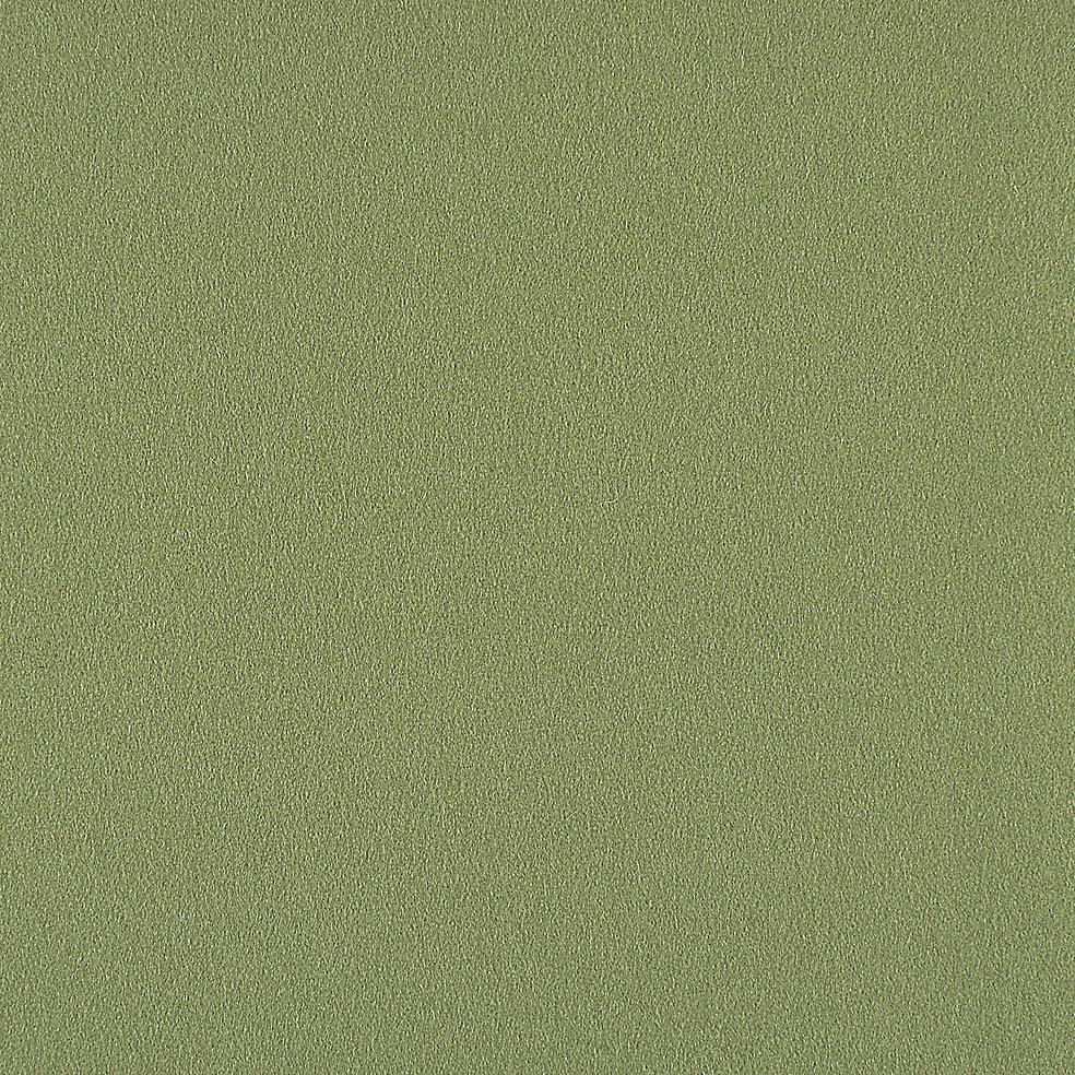 828-62 Spring Grass