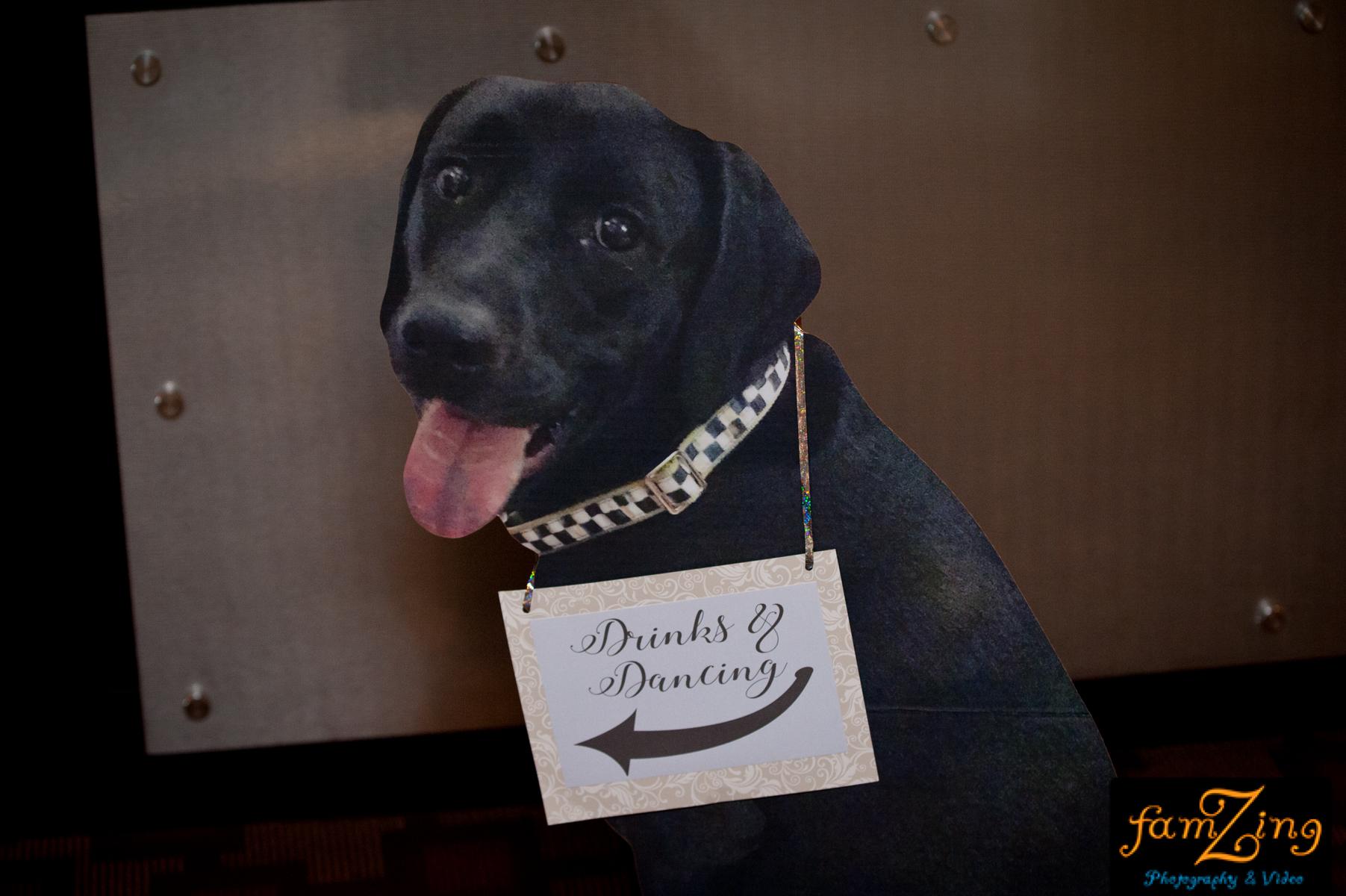 commerce club downtown greenville sc south carolina dog cut outs famzing premiere party entertainment ceremony reception dj djs disc jockey music