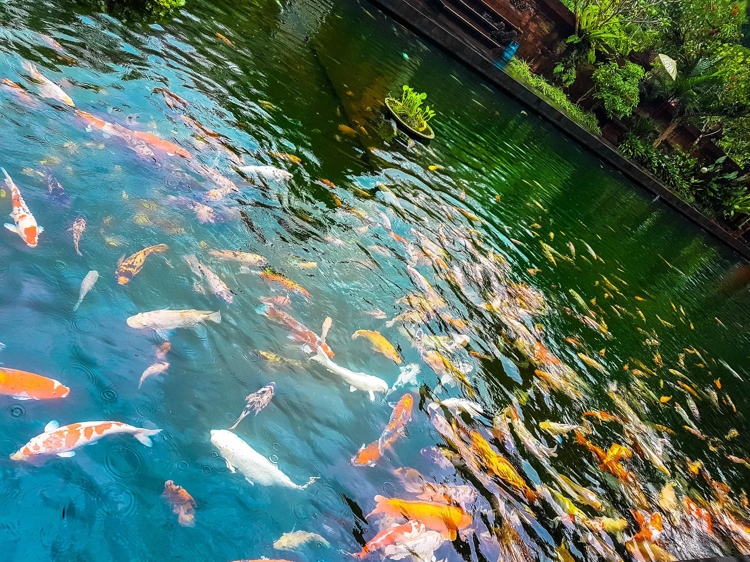 Pura Tirta Empul Water Temple