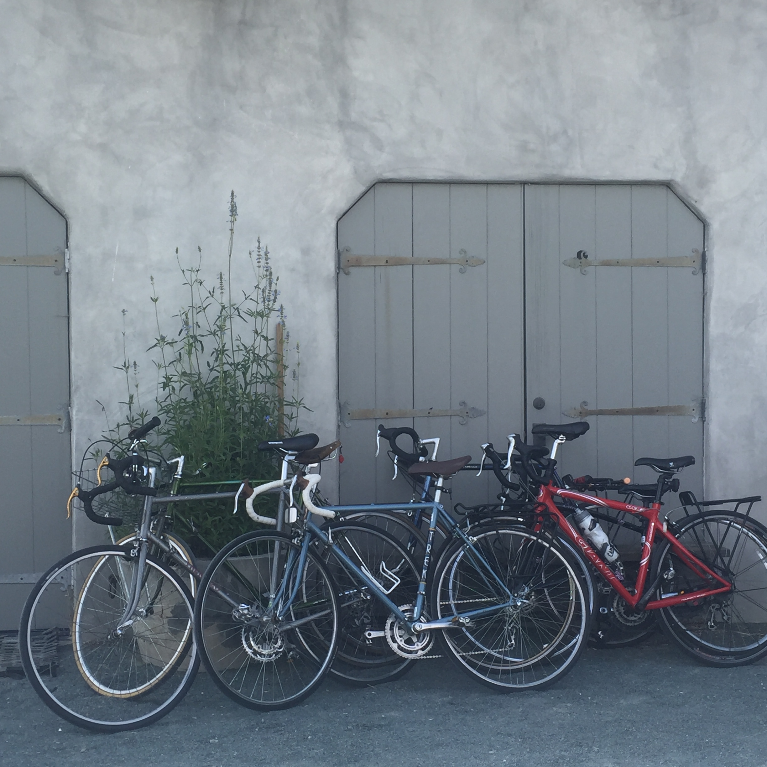 Bikes available to use on The Farm