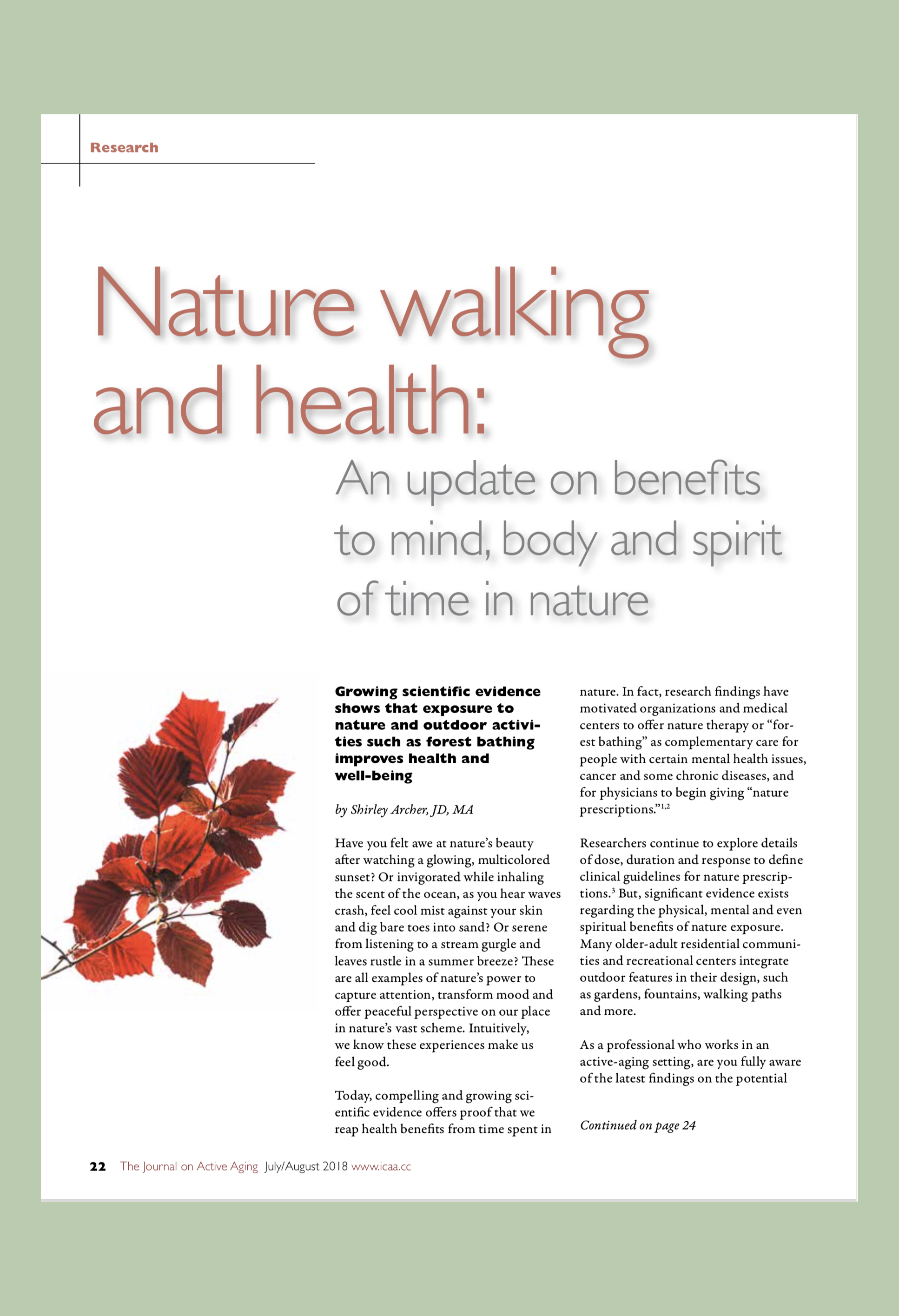 Nature Walking and Health article Image copy.png