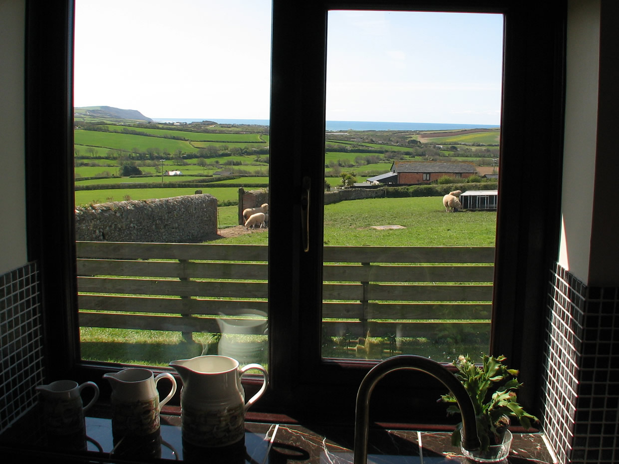 View from the kitchen, looking towards the sea at Widemouth Bay