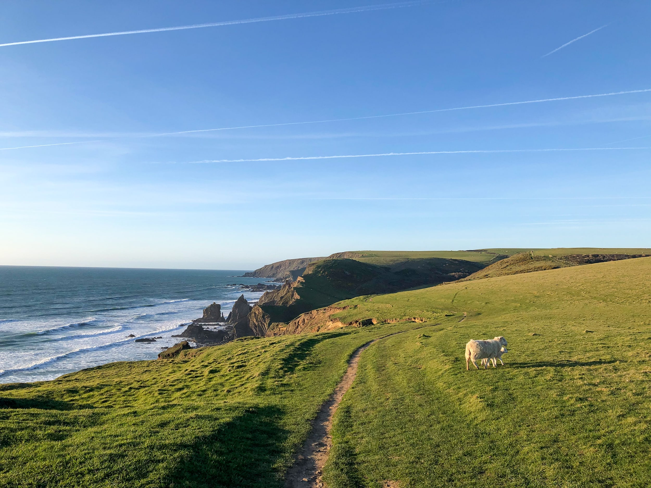 Part of the South West Coast Path, between Northcott Mouth and Sandymouth