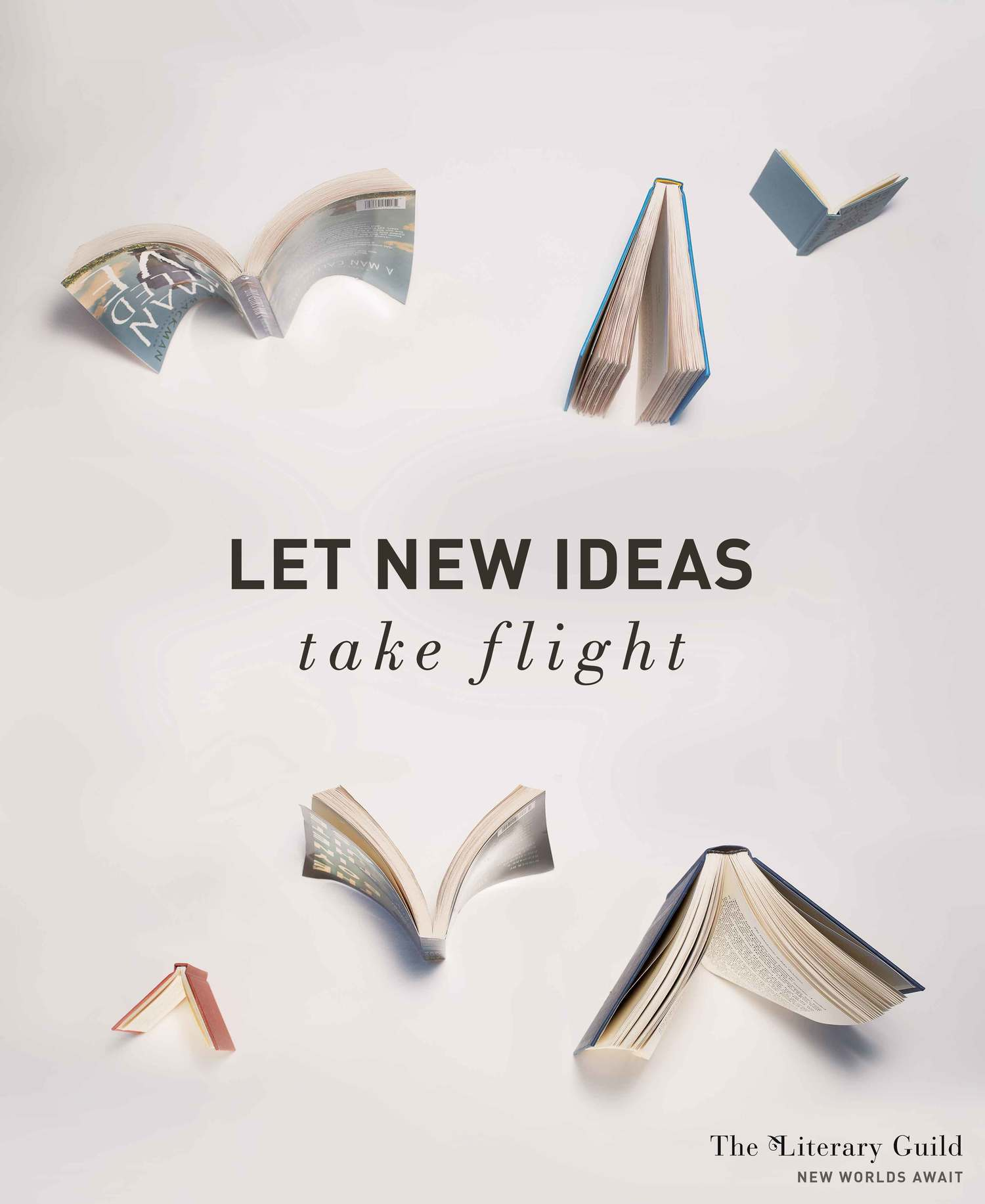 bookspan_flight_1.jpg