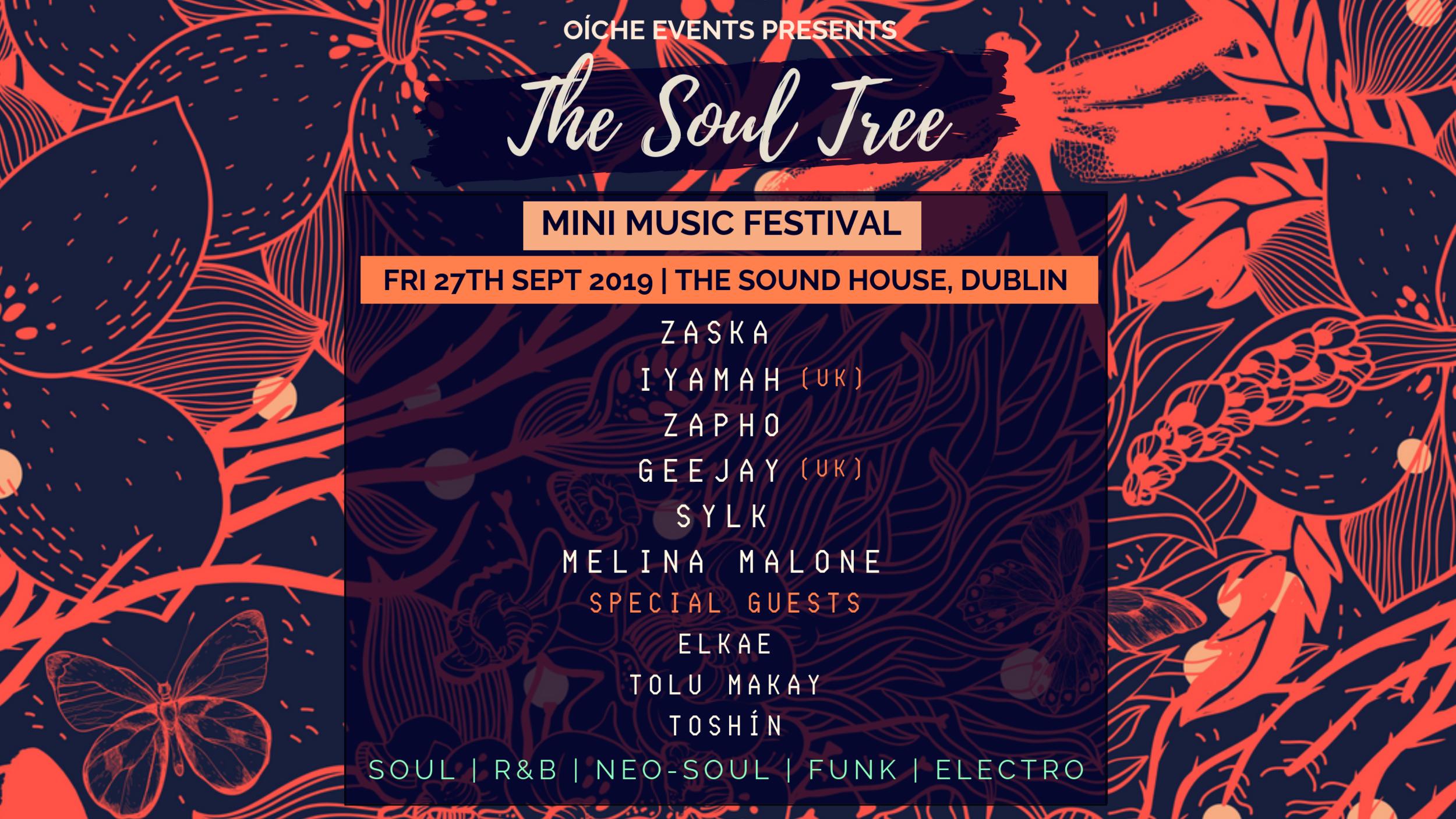 The Soul Tree Mini Music Festival Dublin