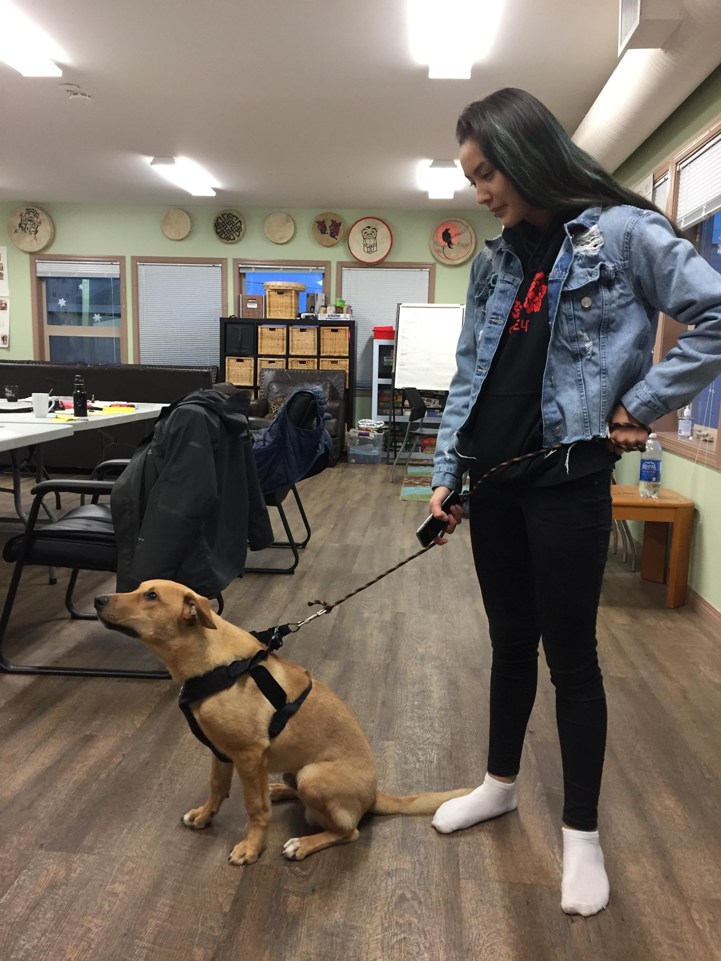 We get to meet Bella's adorable dog BRUCE!