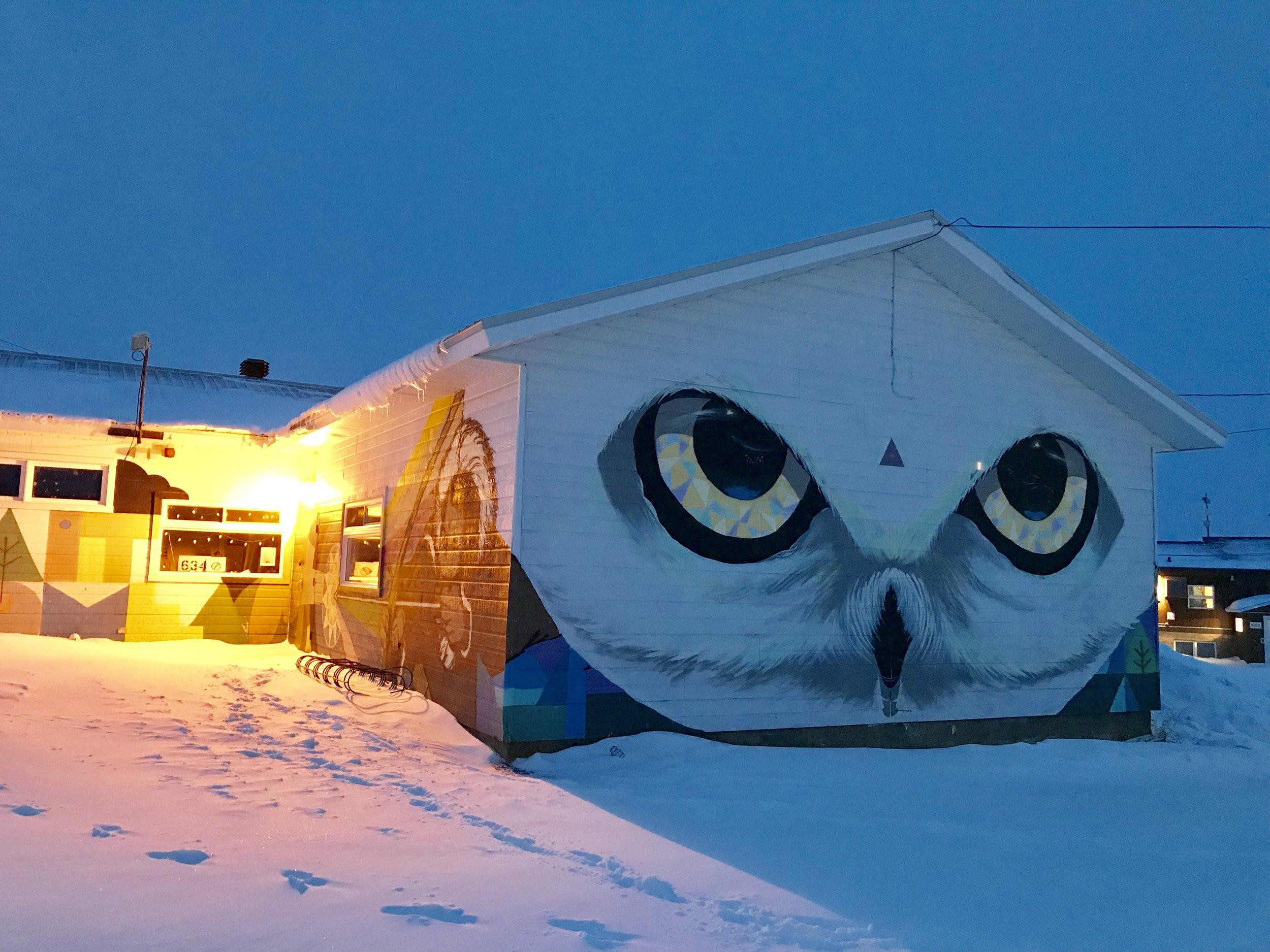 Ukpik (snowy owl!)