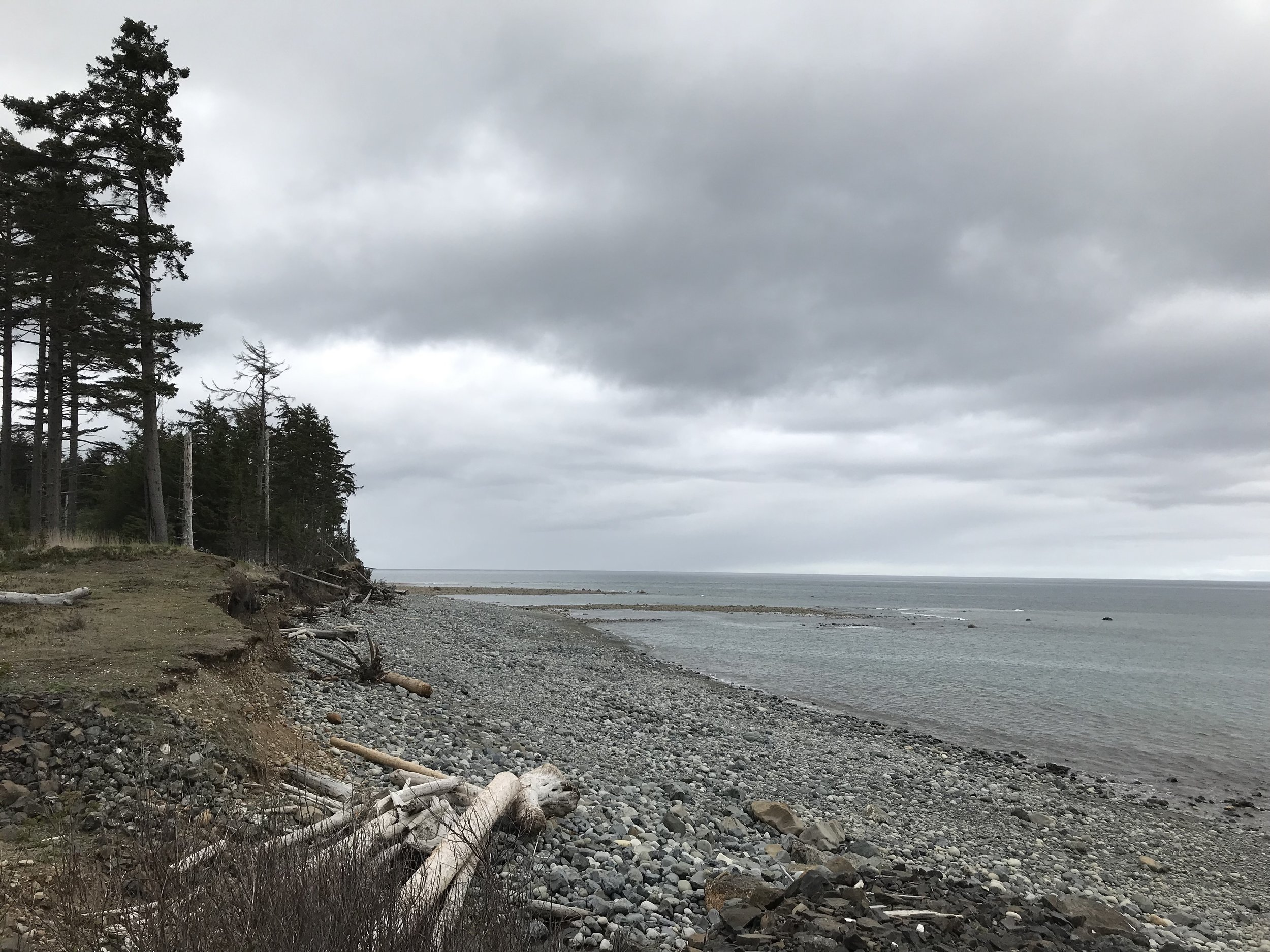 Hecate Strait looking north