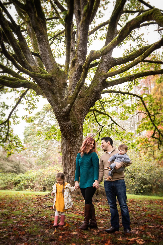 Seattle-Family-Photographer-Tree-Leaves.jpg