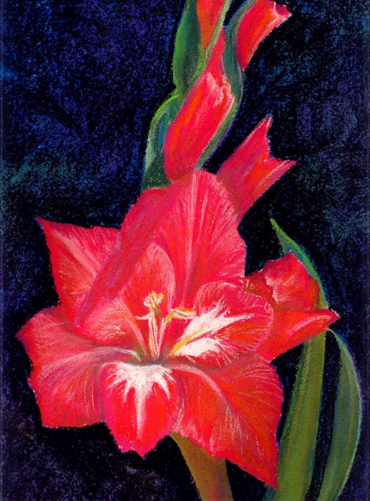 Gladiola pastel.jpg