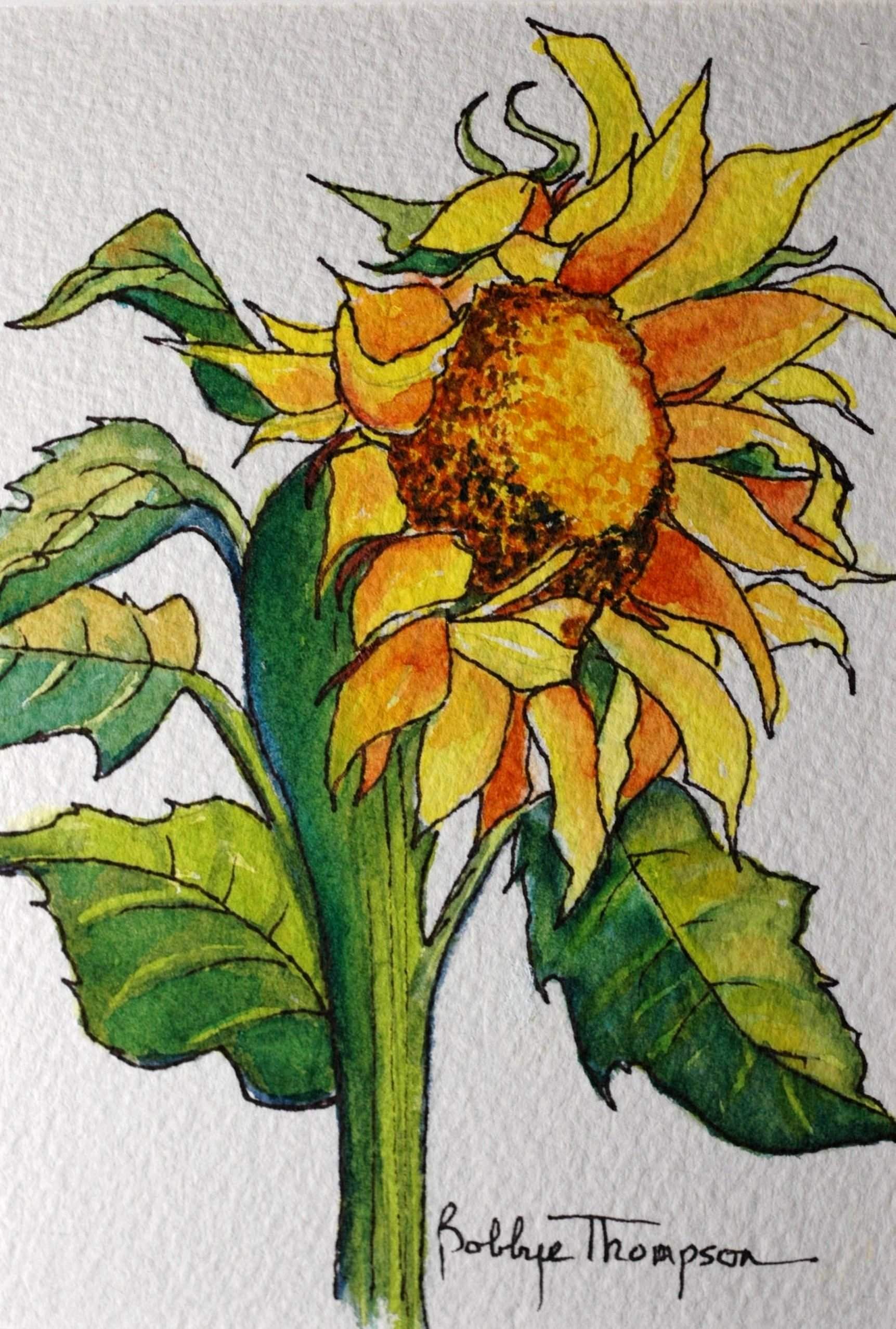 Mini Sunflower 3.JPG