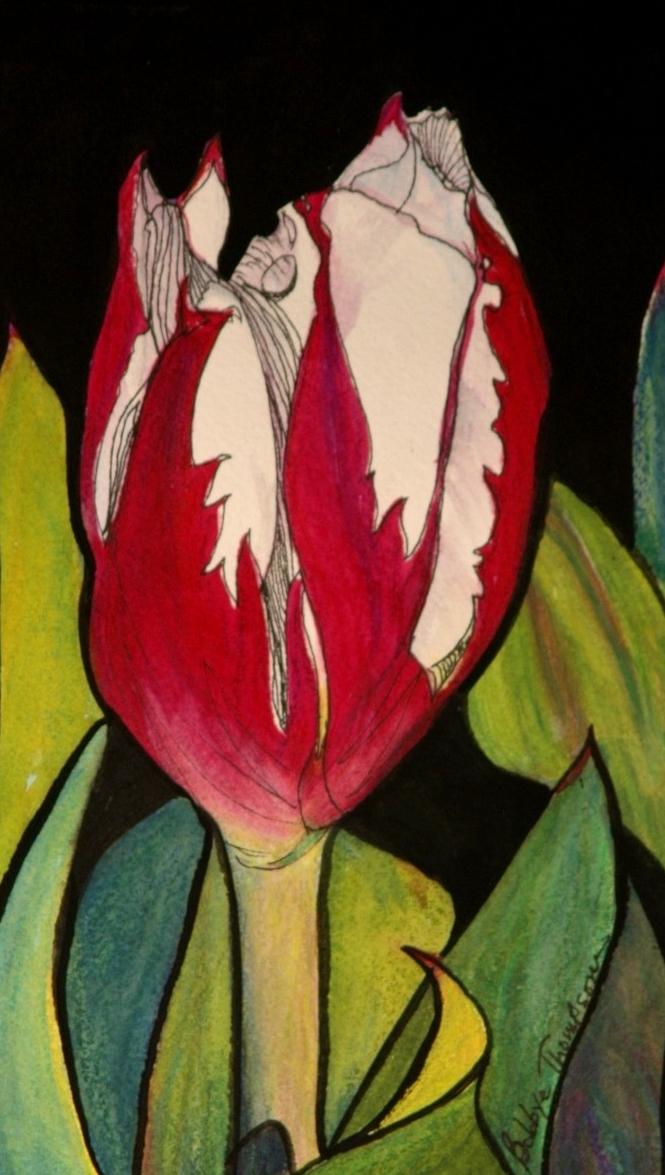 Early Tulip