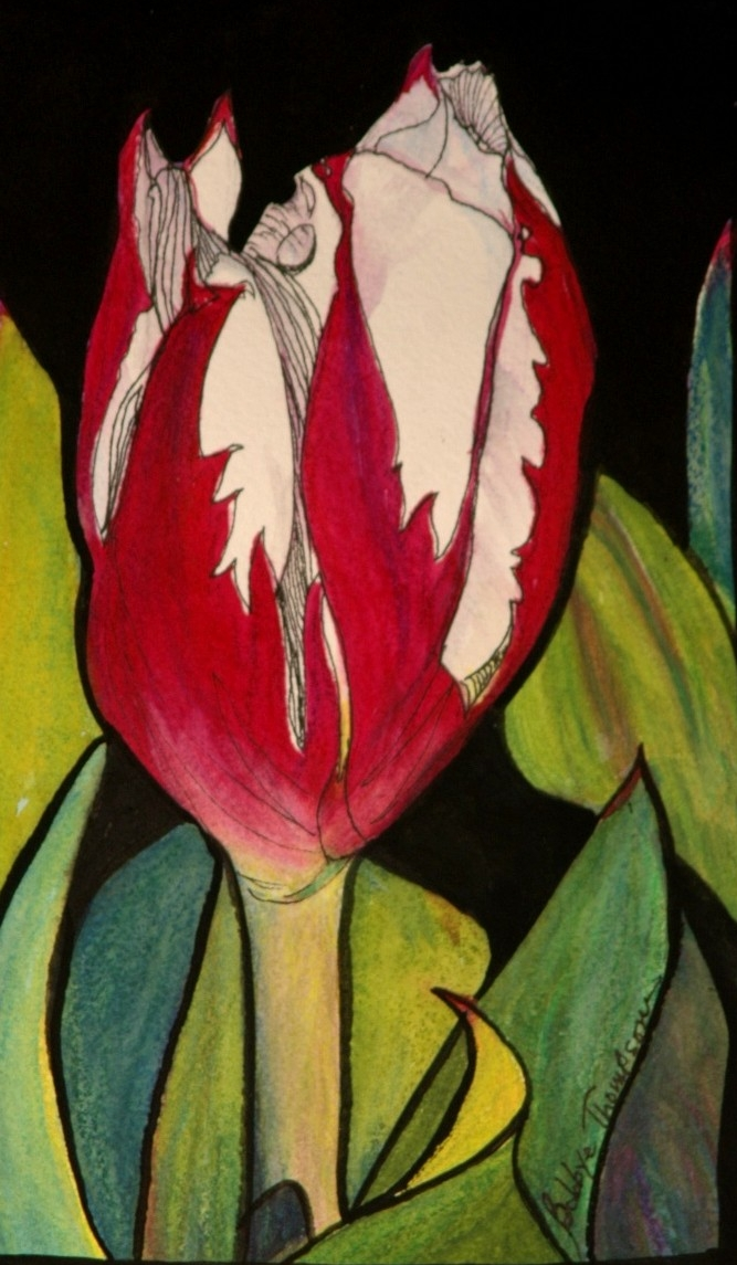 Early Tulip - Watercolor, Pen & Ink.jpg