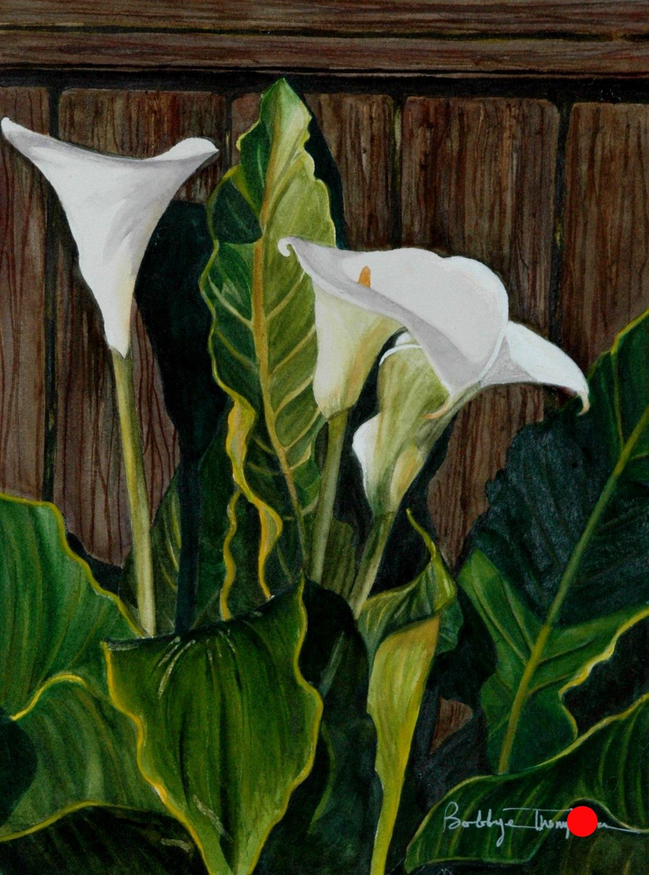 Calla Lilies 6.JPG