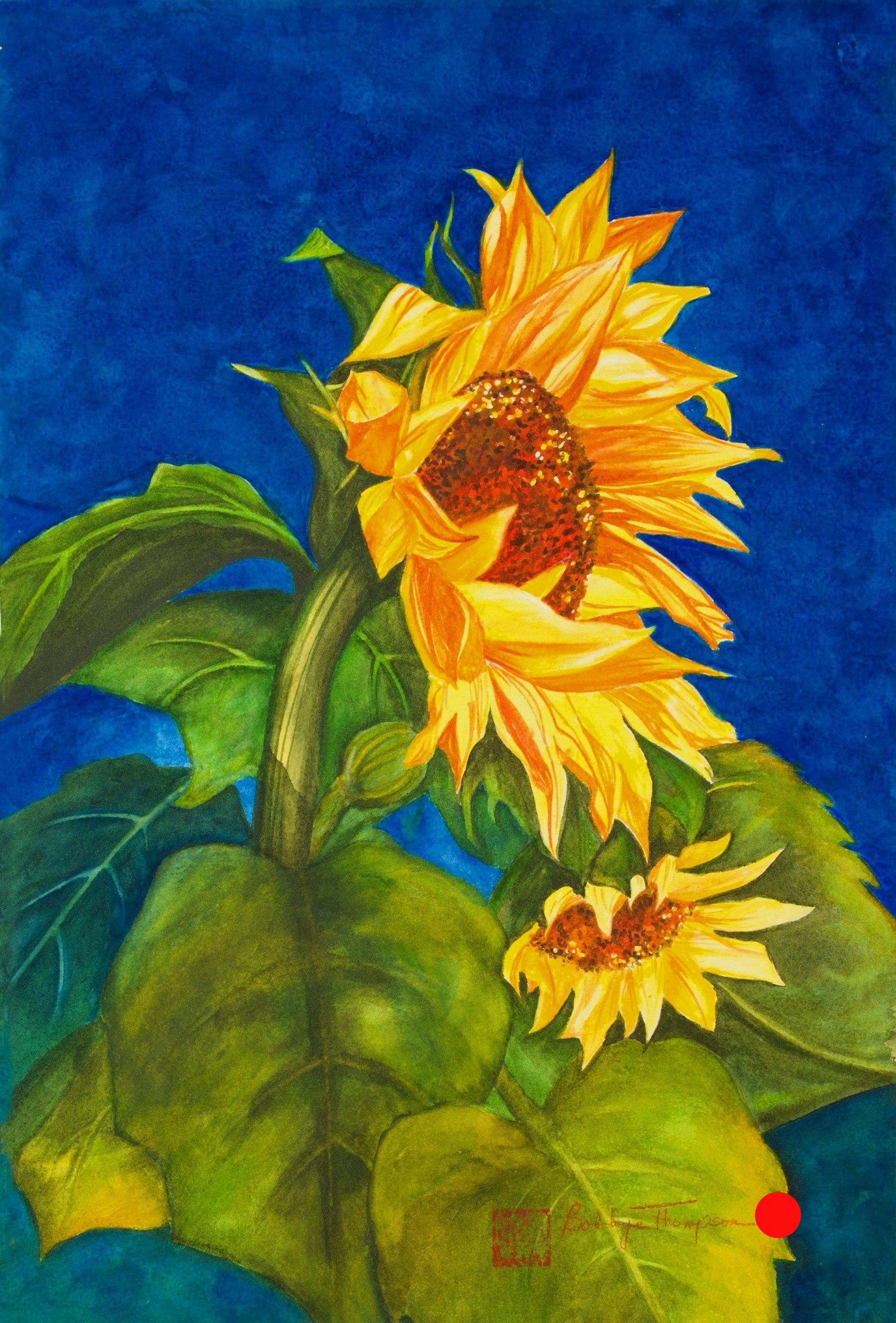 Sunflower Summer.jpg