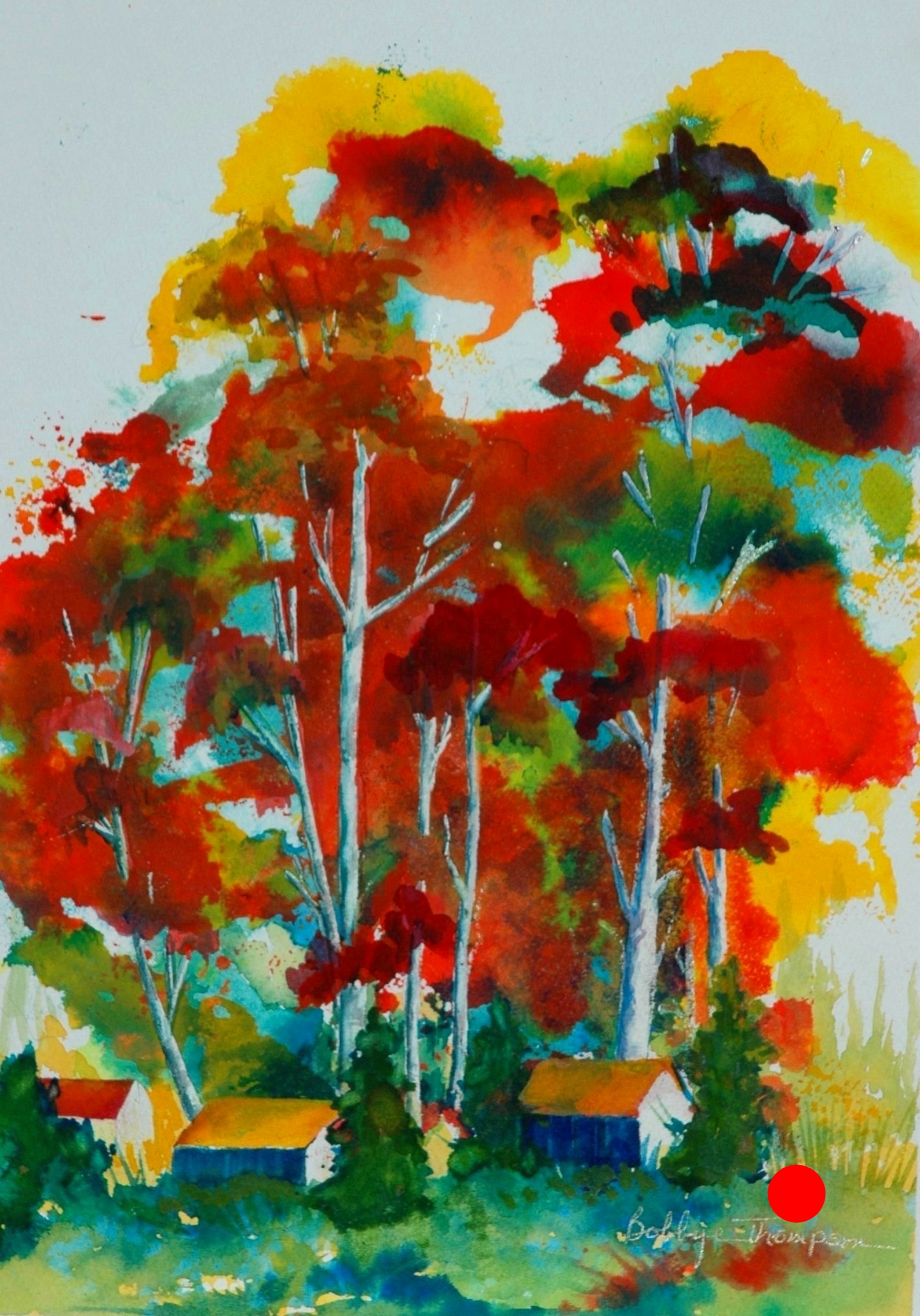 Red Hot Eucalyptus