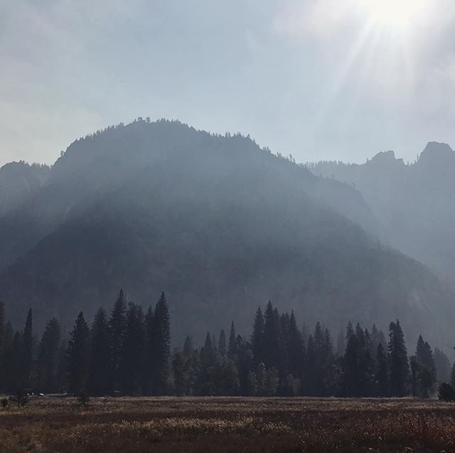Thankful to spend a few peaceful days in Yosemite