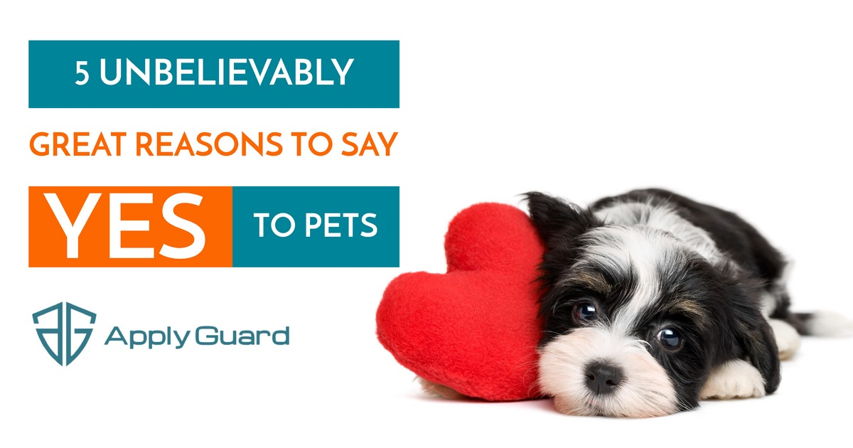 Great Reasons to Say Yes to Pets_FB.jpg