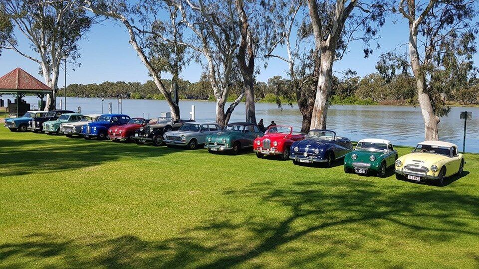 The Queensland Austins lined up on the last day Rally on the banks of the Murray.