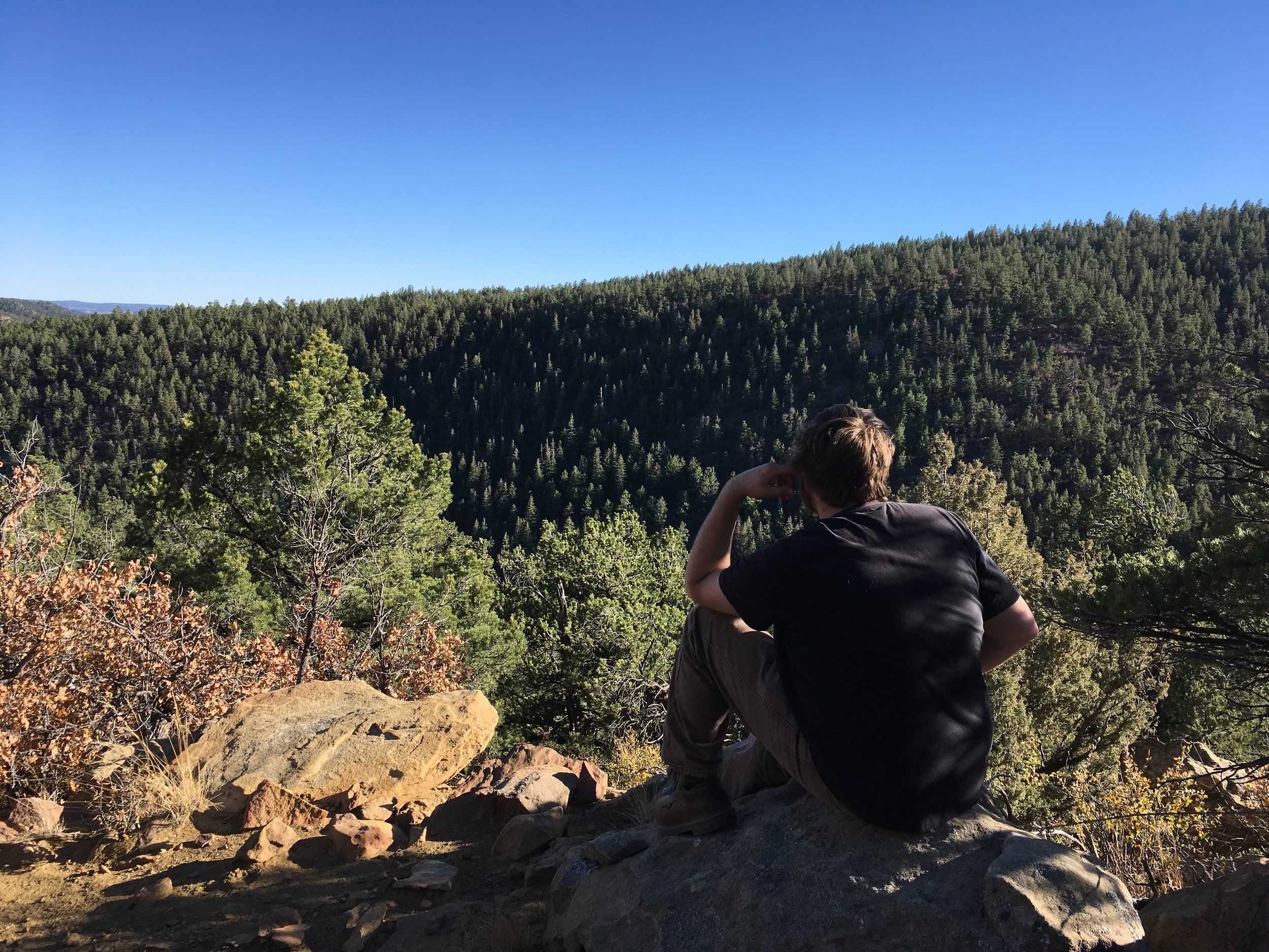 """Join us in Southern Colorado's Sangre de Cristo mountains at an altitude of 8,000' for an extraordinary educational experience! Four days of """"off the grid"""" experiential education: history, human geography, cultural anthropology, and suatainability practices all from a Native American perspective."""