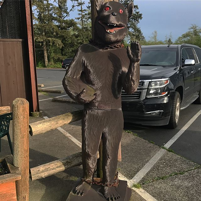 Dogman sighting in Seaside OR. #cryptozoology #cryptozoologist #dogman #cryptid