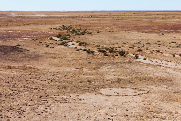 Stone circles east of Birdsville, man made, use still speculating! Click the image to see the ABC story on the Mithaka work and uncovering we were somewhat a part of.