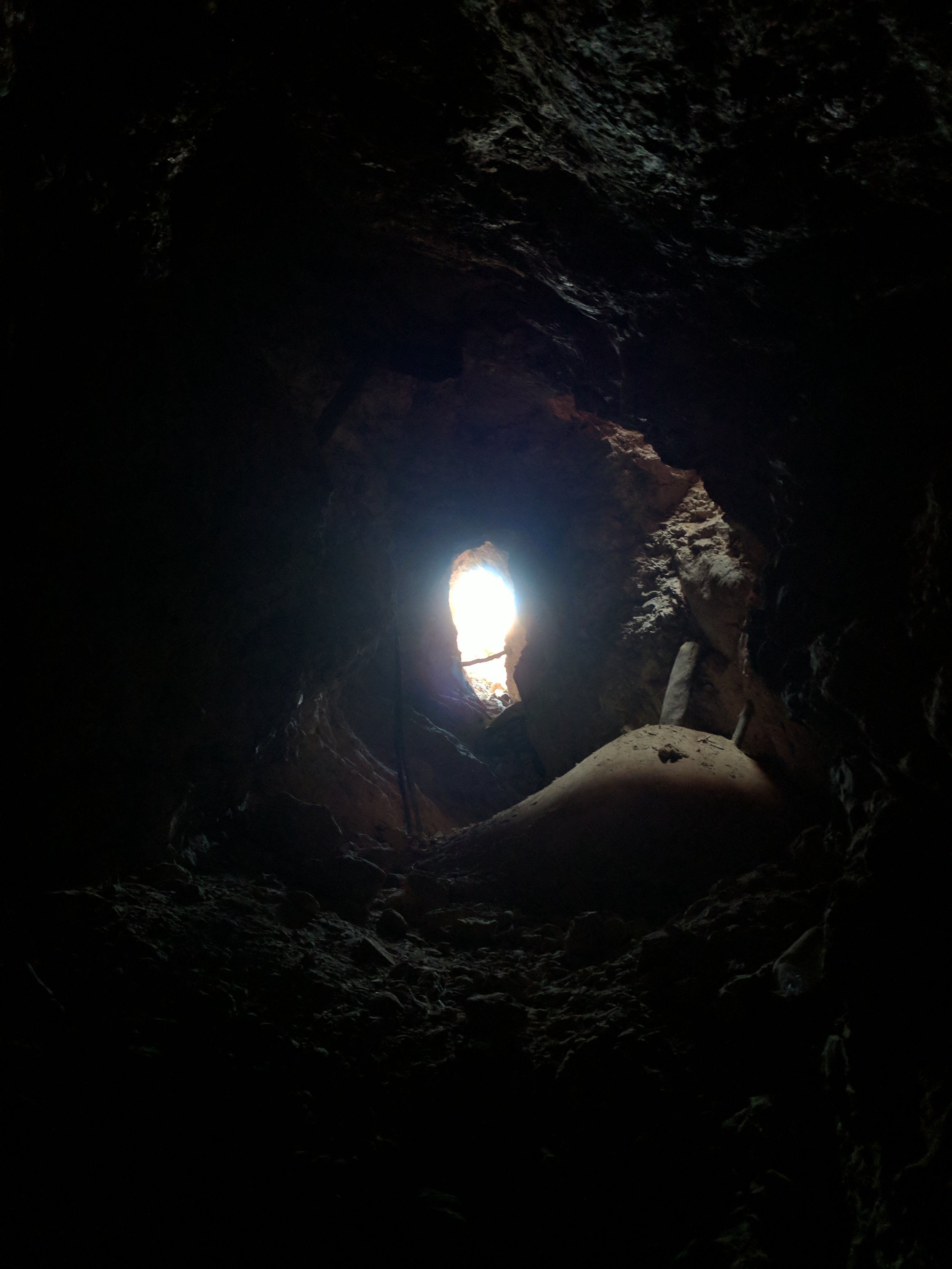 Looking up an abandoned hand dug mine shaft right next to a dead kangaroo
