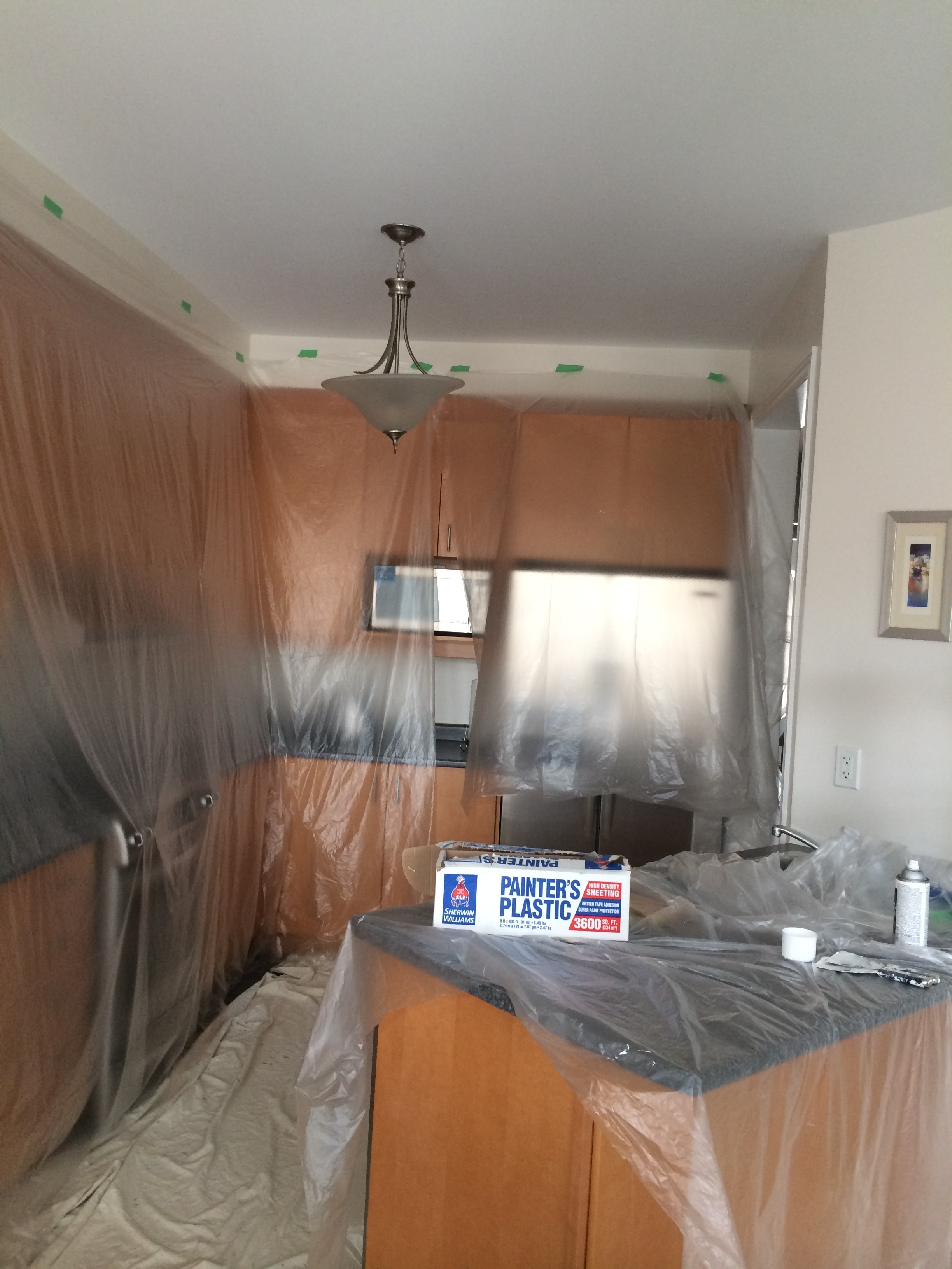 Painters in Mississauga