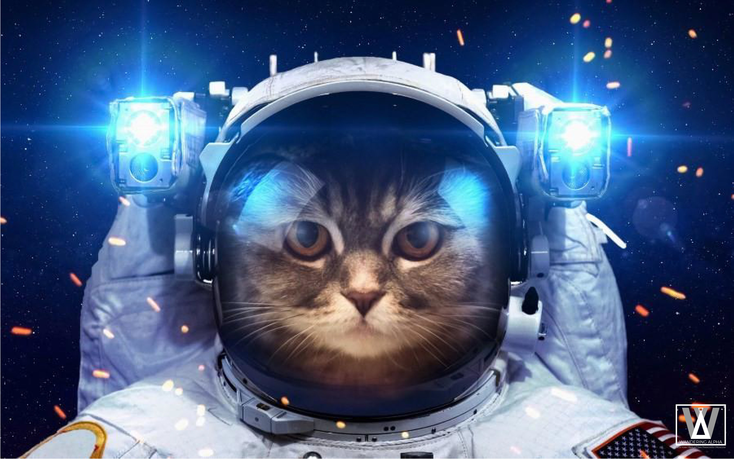 cat_astronaut_spacesuit_lanterns_light_space_animal_humor_1024x1024-01.jpg