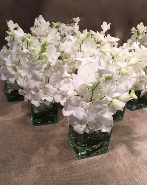 white dendrobium orchids in square glass.jpg