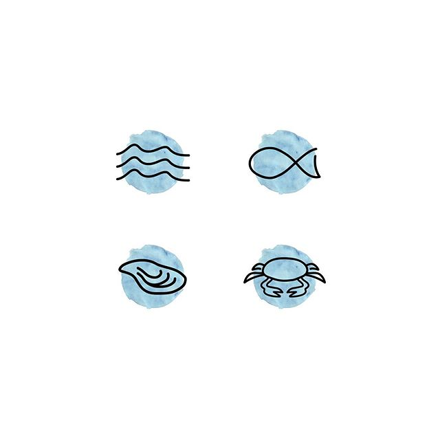 Branding is so much more then just a logo. These custom icons for Coast Modern Seafood, a conceptual restaurant, are a perfect addition to the brand. They add another unique element to incorporate in things like a website, menu, signage or print collateral.
