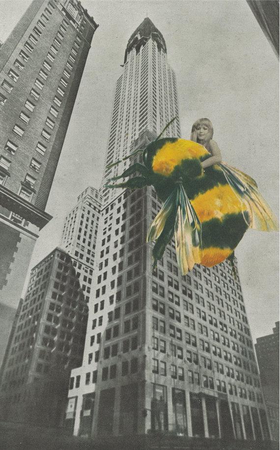 """King Bee"""