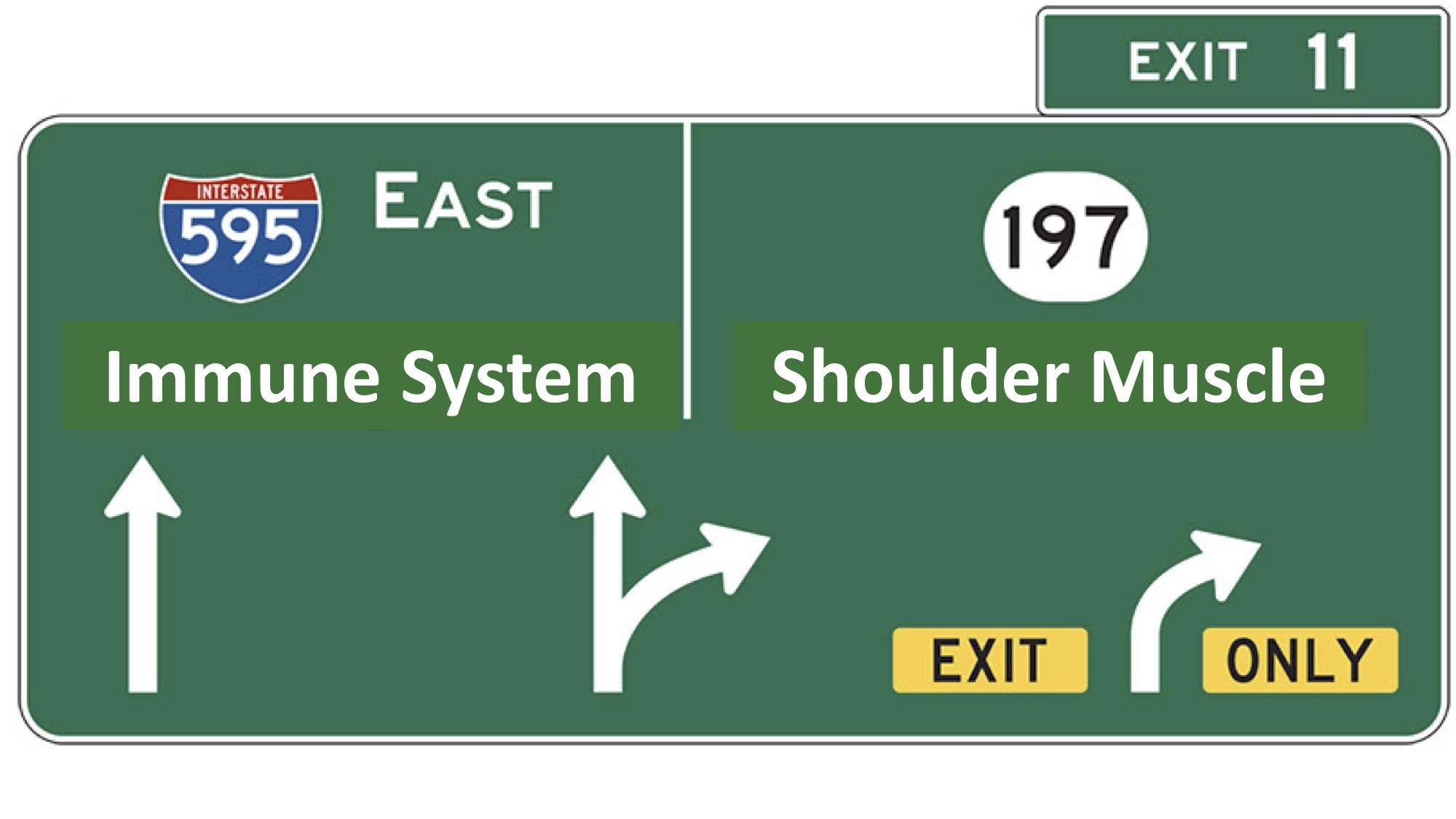Traffic Sign.jpg