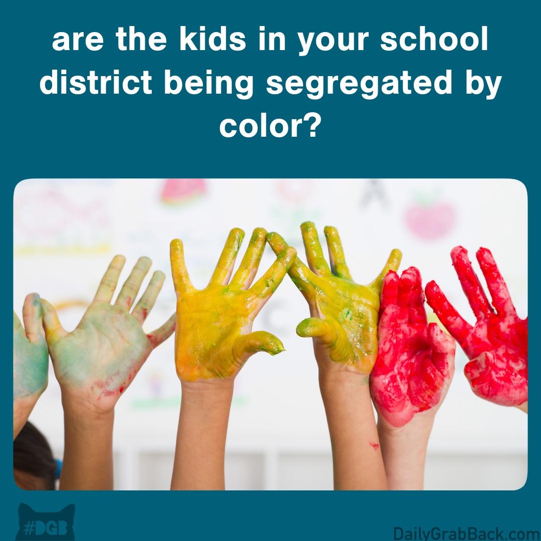 8-28SchoolSegregation.jpg
