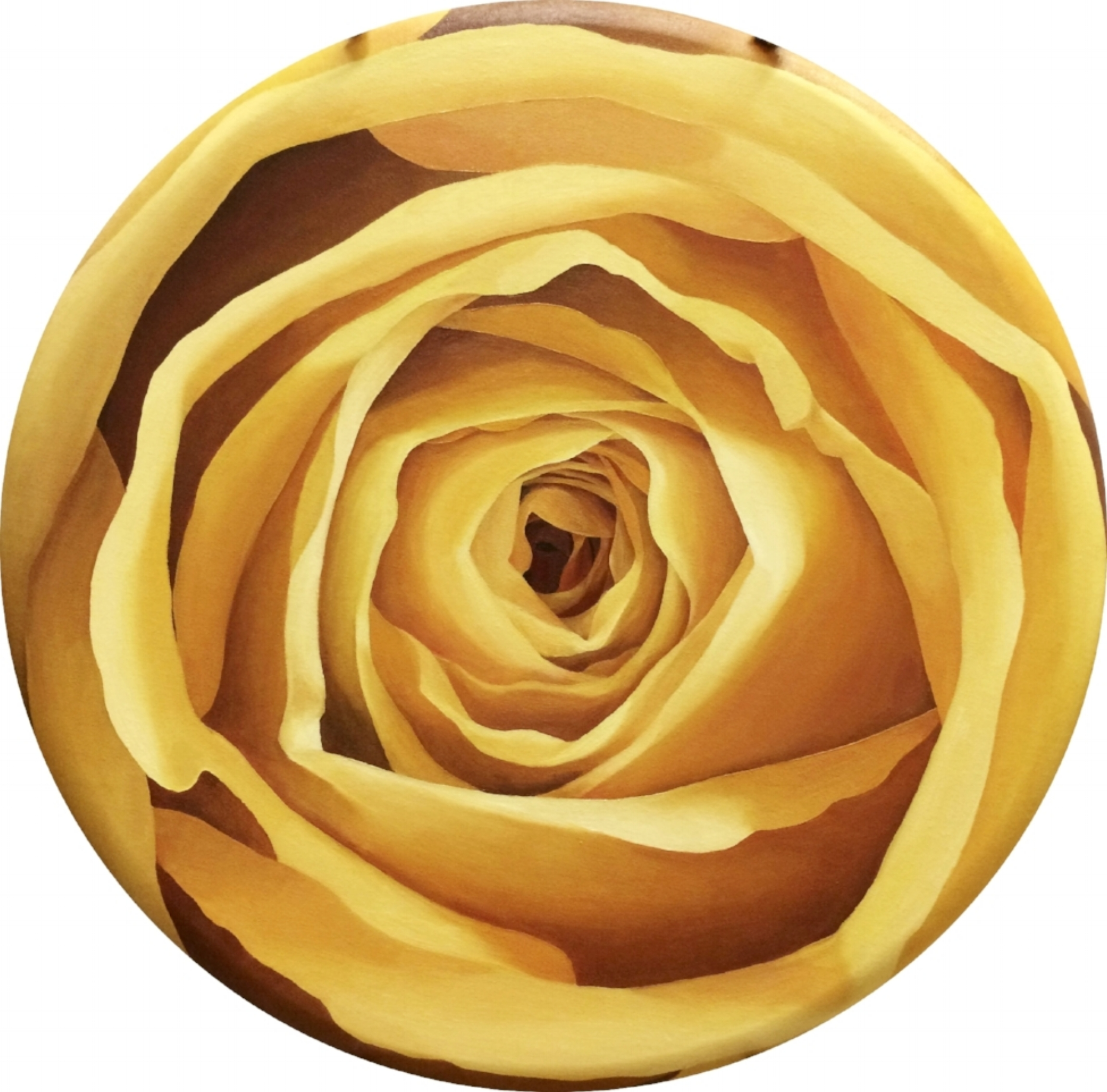 "YELLOW ROSE - 24"""